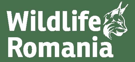 Wildlife Romania
